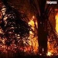 L'Amazonie est toujours en proie aux flammes