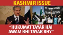 Govt and nation ready over Kashmir issue: Shah Mehmood Qureshi