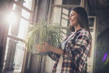 ¿Cómo decorar tu casa según tu signo astrológico?