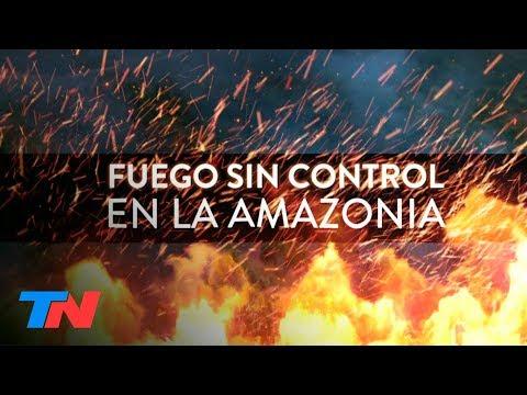 """""""Lo intencional está fuera de duda"""": Nelson Castro en la Amazonia en llamas"""