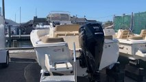 2020 Scout 195SF Boat For Sale at MarineMax Long Island, NY