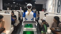 A Restaurant In India Has A Robot Staff