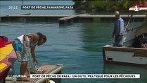 Au cœur du fenua : le port de pêche de Paea