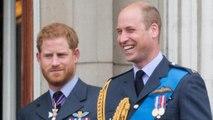 Depressione e attacchi di panico, così William salvò Harry dopo la morte di Lady D.