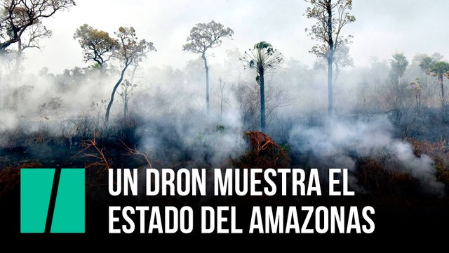Un dron muestra el estado del Amazonas