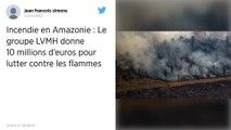 Amazonie : Le groupe LVMH donne 10 millions d'euros pour lutter contre les incendies