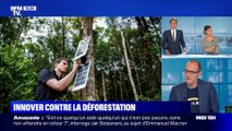 Innover contre la déforestation
