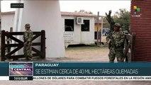 Paraguay: unas 20 mil hectáreas afectadas por incendios