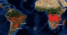 En Afrique, le « deuxième poumon vert de la planète » est aussi en train de brûler