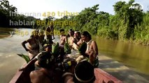 Cinco cosas a saber sobre la Amazonia