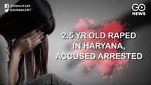 2 Year Old Raped In Haryana, Accused Arrested