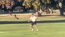 Deux golfeurs attaqués par des oiseaux