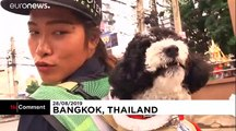 Bangkok street sweeper is carrying her dog to work