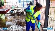 Martinique : les habitants face aux dégâts de la tempête Dorian