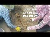 Au Pérou, le plus grand site de sacrifice rituel d'enfants déterré