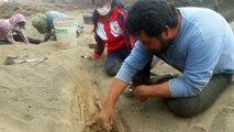 Hallan 227 restos de niños sacrificados en ritual precolombino en Perú