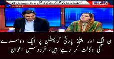 PPP and PMLN support each other over corruption: Firdous Awan