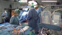 España encabeza la donación de órganos en todo el mundo