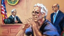 Jeffrey Epstein's Suicide 'Far More Consistent with Assault' Argues His Attorneys