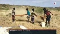 Éthiopie : qui est l'australopithèque anamensis, ancêtre de Lucy ?