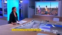 Incendies en Amazonie : les indigènes font face à la destruction des forêts