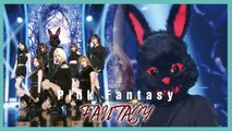 [HOT] Pink Fantasy  - FANTASY,  핑크판타지 - Fantasy Show Music core 20190831