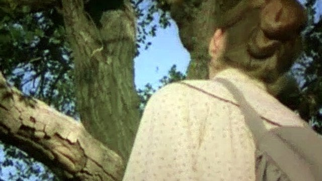 Little House on the Prairie Season 8 Episode 17 Days of Sunshine, Days of Shadow Part One - Part 02