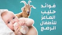 فوائد حليب الماعز للأطفال الرضع