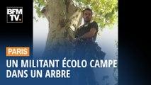 Un homme campe dans un arbre à Paris pour sauver des arbres dans le Gers