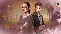 Roop Episode #02 Promo Choti Choti Batain HUM TV Drama