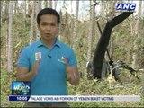 Eight on board PAF Huey chopper survives crash in Leyte