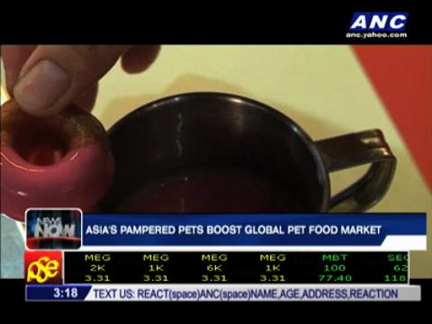 Asia's pampered pets boost global pet food market