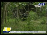 AFP condemns BIFF's use of child soldiers