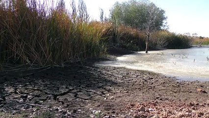 El mundo vivirá más sequía y aridez atmosférica, según un estudio