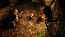 Solasta : Crown of the Magister - Bande-annonce du Kickstarter
