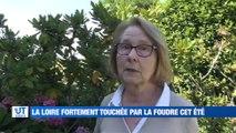 A la Une : On connait le nom des futures enseignes de STEEL / La Loire foudroyée cet été / Ils n'ont toujours pas d'accompagnant pour leur enfant handicapé / Plus de bus dans le Forez !