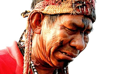 Brazil cancels indigenous land requests after land dispute