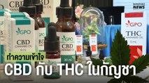 ทำความเข้าใจ CBD กับ THC ในกัญชา