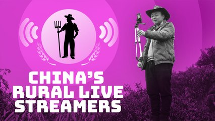 China's new live streaming stars are farmers