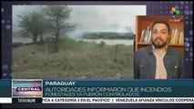 Paraguay logra controlar los incendios forestales