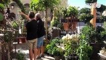 Un jardin au cœur de La Visitation