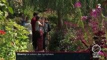 Eure : les nymphéas, stars de la maison de Monet à Giverny