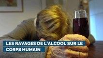 Les ravages de l'alcool sur le corps humain