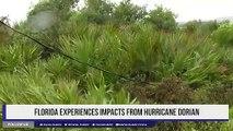 Florida experiences impacts from Hurricane Dorian