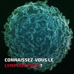 La bombe du lymphocyte X