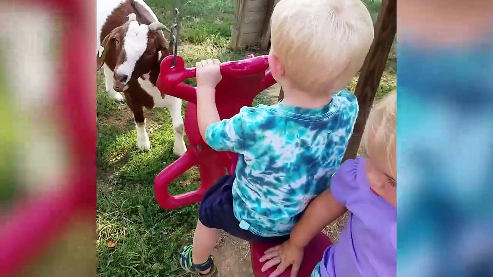 The Funniest Pets Meet The Cutest Kids - Babies of 2017 Weekly Compilation - Funny Pet Videos
