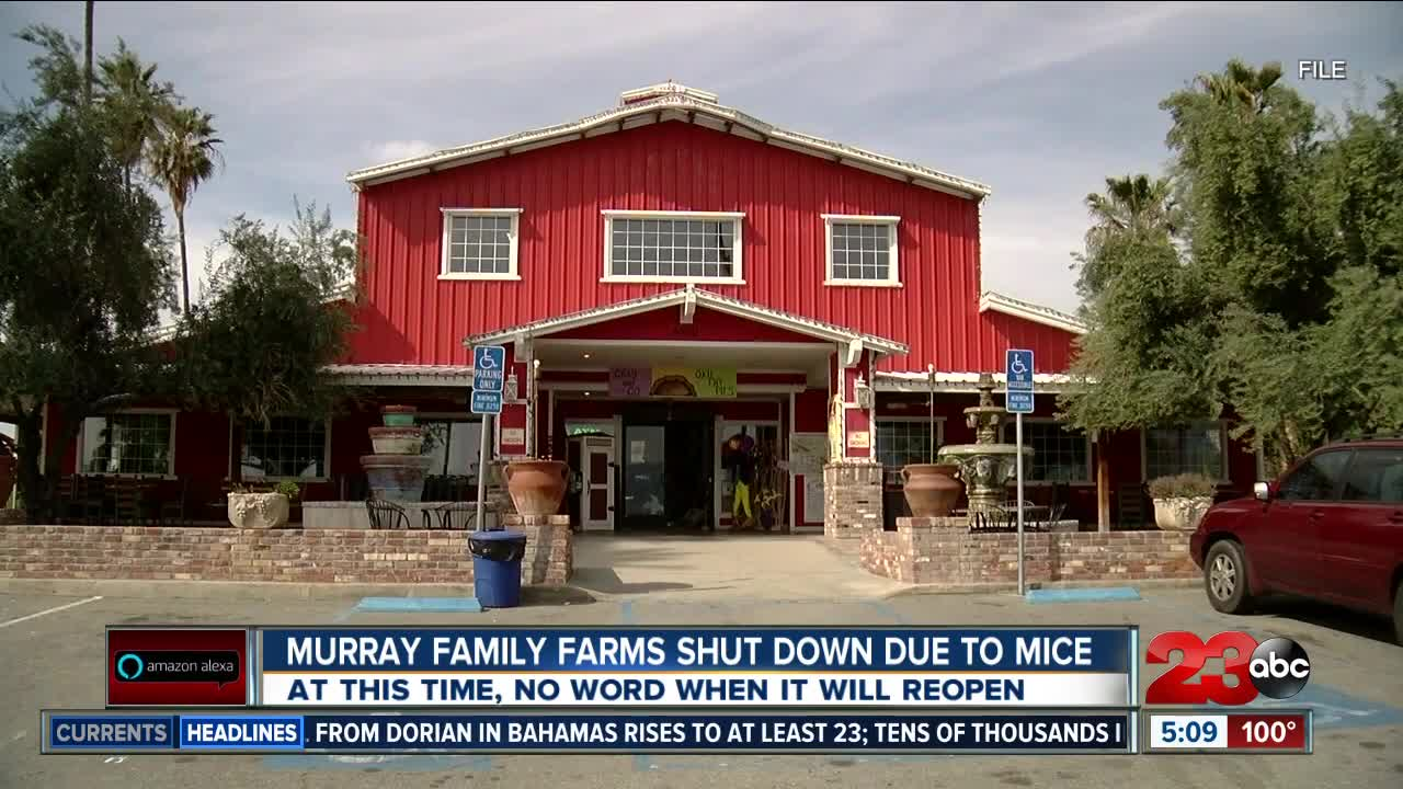 Murray Family Farms closes down due to rodent infestation