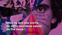 The Voice 9  Mika a quitté l'émission pour se consacrer à sa musique