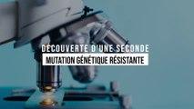 Espoir pour un traitement contre le VIH : découverte d'une seconde mutation génétique résistante
