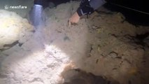 Scuba divers find huge sheet of plastic floating in cave system off the Bahamas